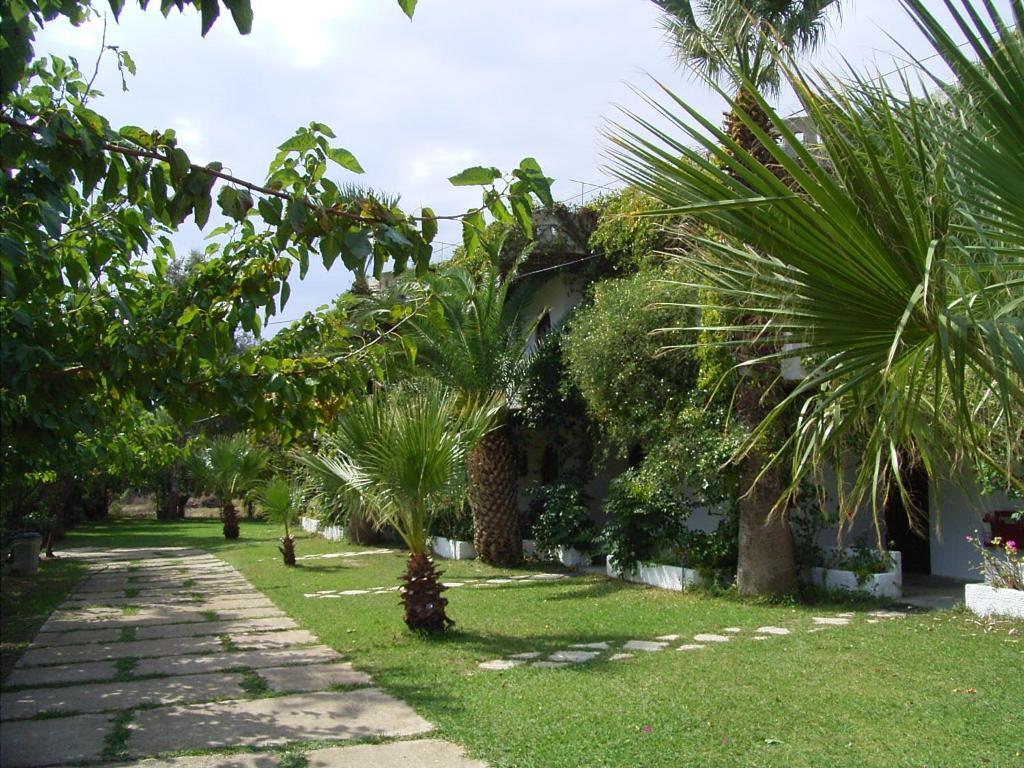 A garden outside Damnoni Paradise