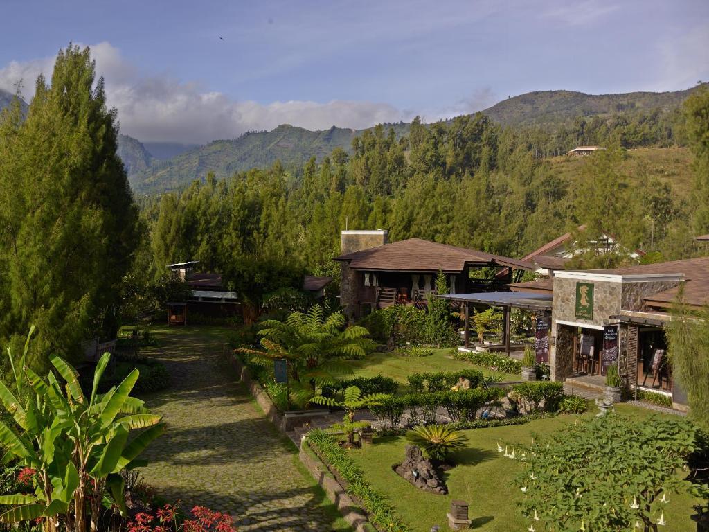 A garden outside Jiwa Jawa Resort Bromo