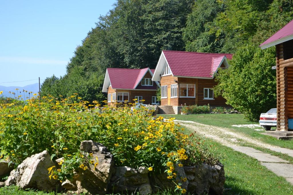 A garden outside Zvezdnaya dolina