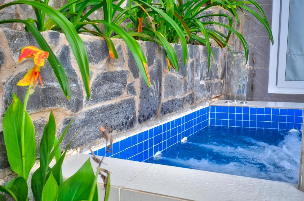 Suite Có Vườn Nhìn Ra Đồi - Bao Gồm Spa