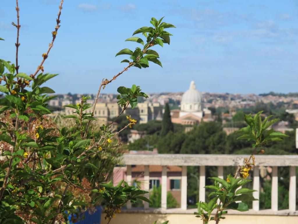 Appartamento Terrazza Fiorita Italia Roma Booking Com