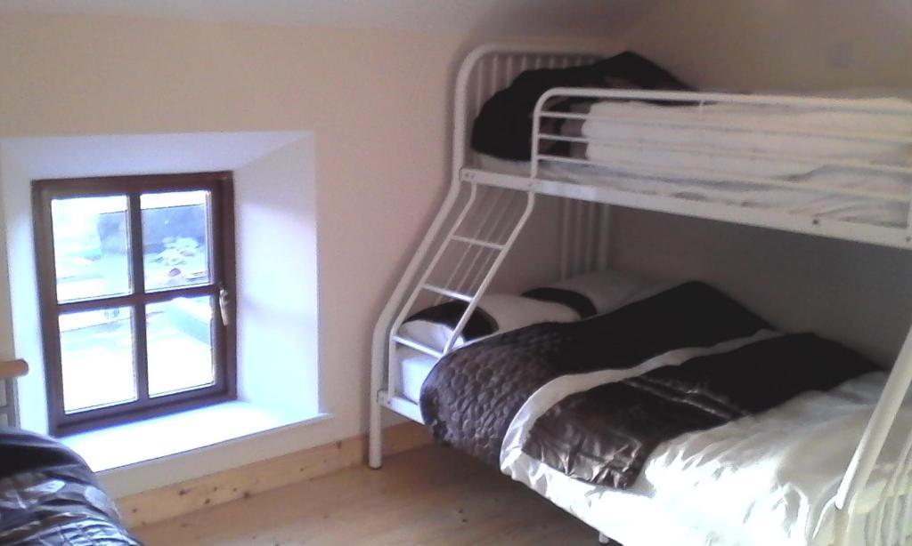 A bunk bed or bunk beds in a room at Green Adventure EcoHostel