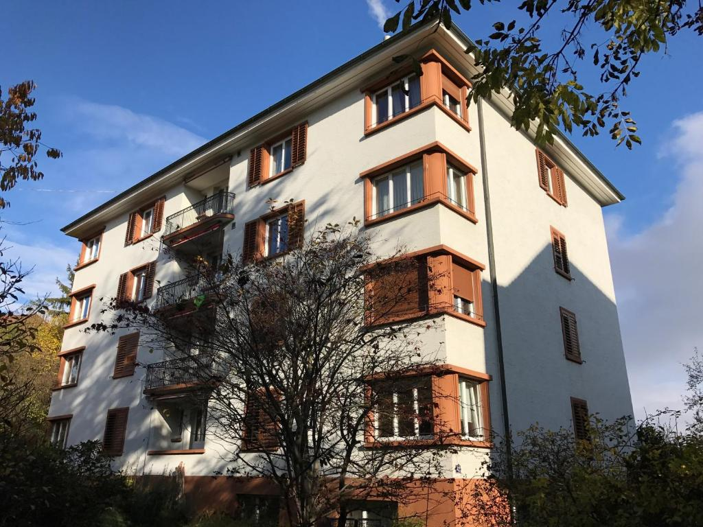 Zurich Furnished Apartments during the winter