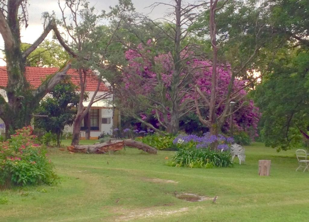 A garden outside La argentina Country House