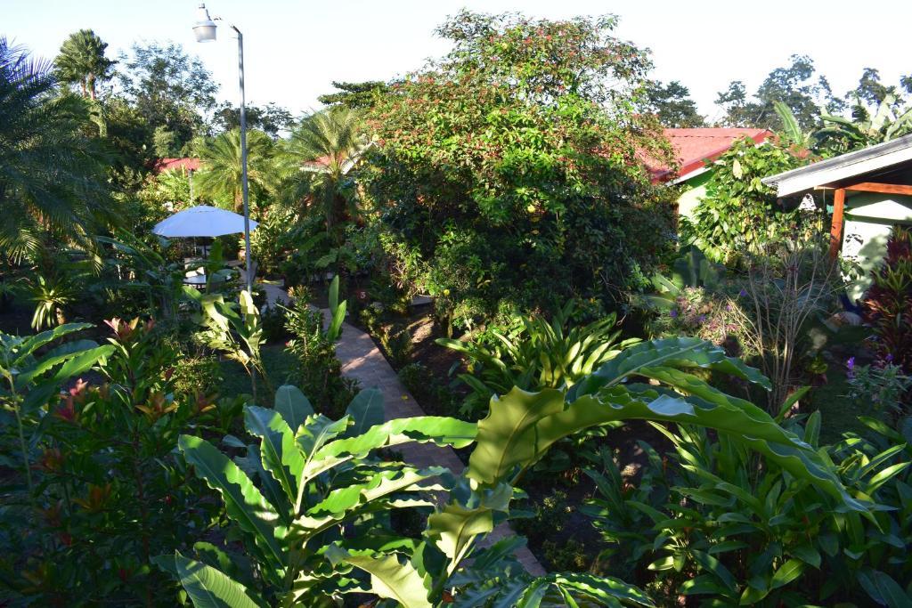 Een tuin van Hotel Roca Negra Del Arenal