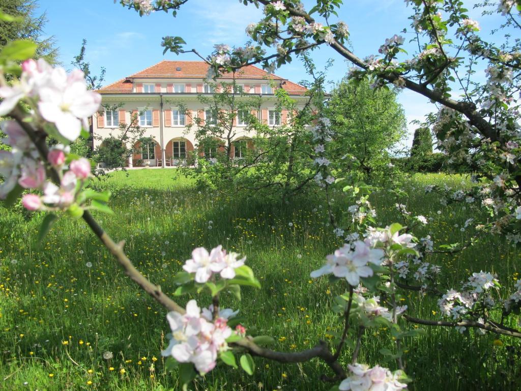 Ein Garten an der Unterkunft Burgbühl
