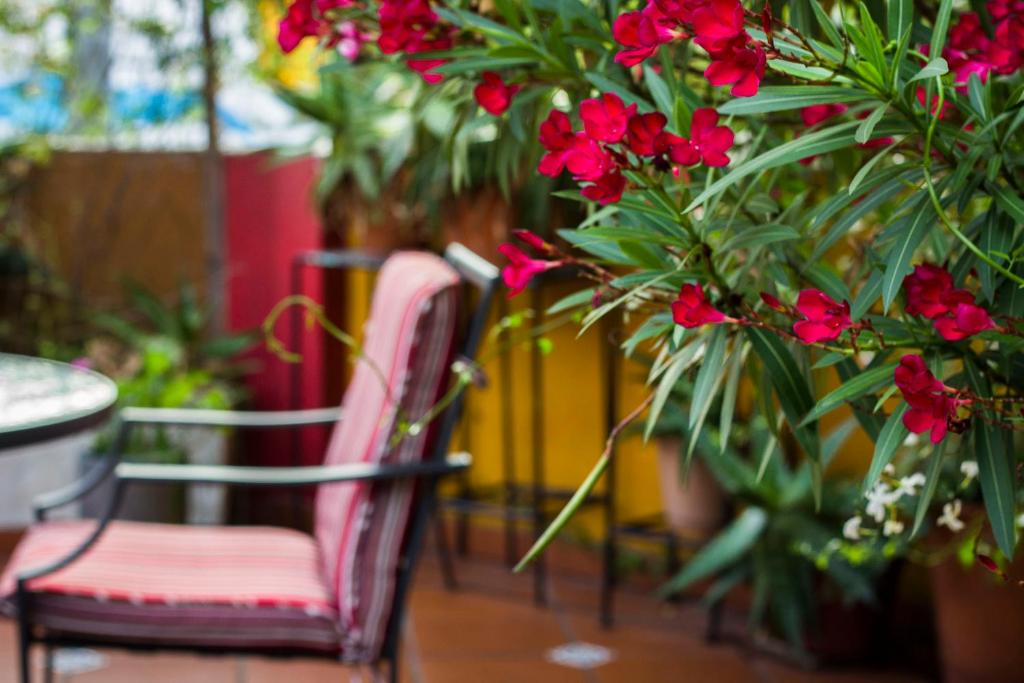 Surprising Bed And Breakfast Abode Buenos Aires Argentina Booking Com Gmtry Best Dining Table And Chair Ideas Images Gmtryco