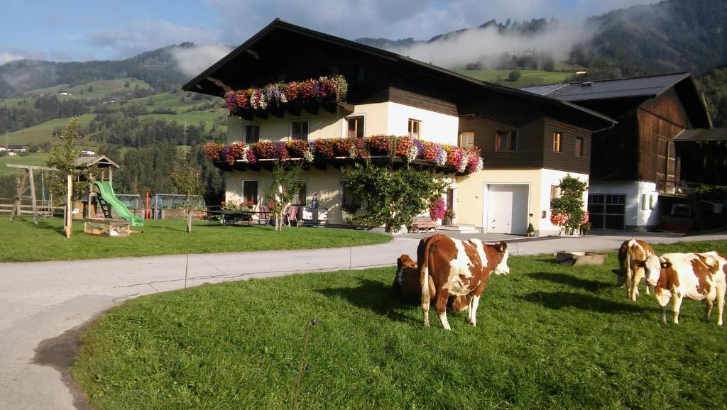 Bauernherbstfest Taxenbach - Raurisertal