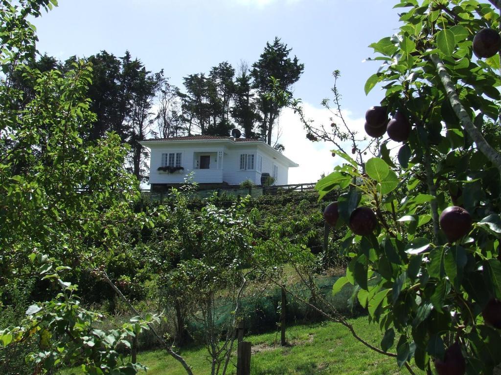 Runciman Berries and Emus B&B