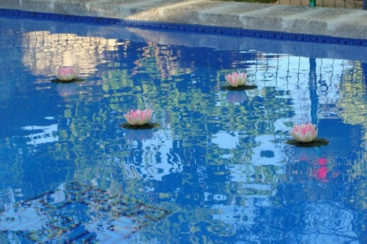 Arcas de Agua, Arcas (con fotos y opiniones) | Booking.com