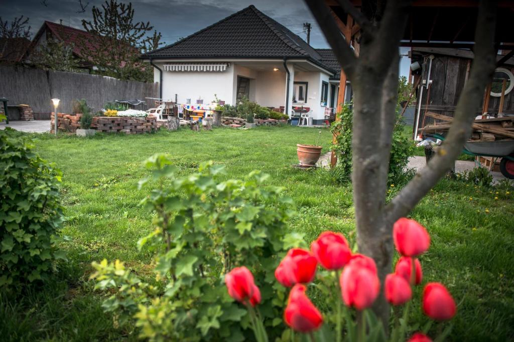 Een tuin van Domček u Komorníka