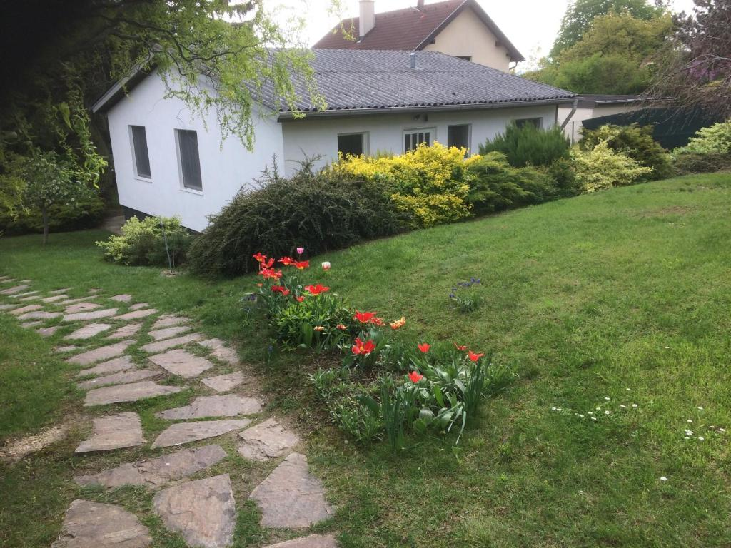 Frau sucht Mann Hagenbrunn | Locanto Casual Dating
