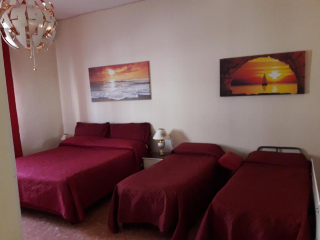 Letto o letti in una camera di Hotel Nuovo Diana