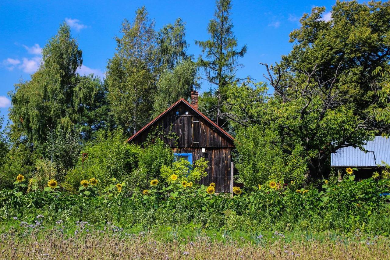 Дом для отпуска  Chata Na Końcu świata