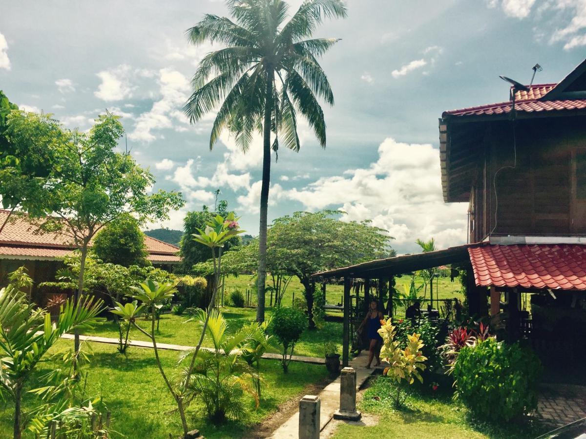 Гостевой дом  Soluna Guest House