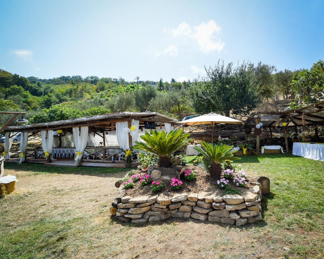 Фермерский дом  Agriturismo Primaluce