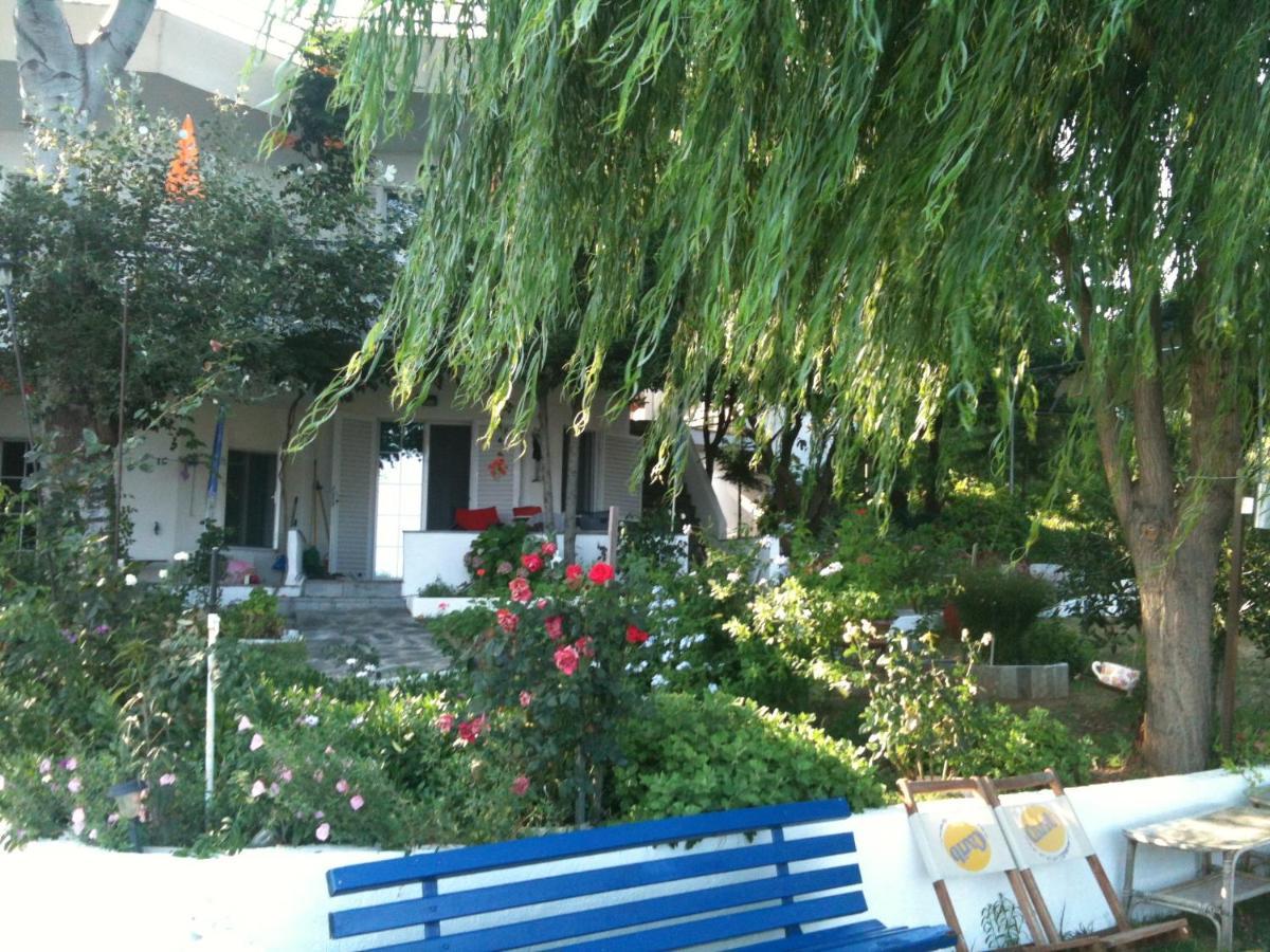 Апартаменты  Leonidas Studios