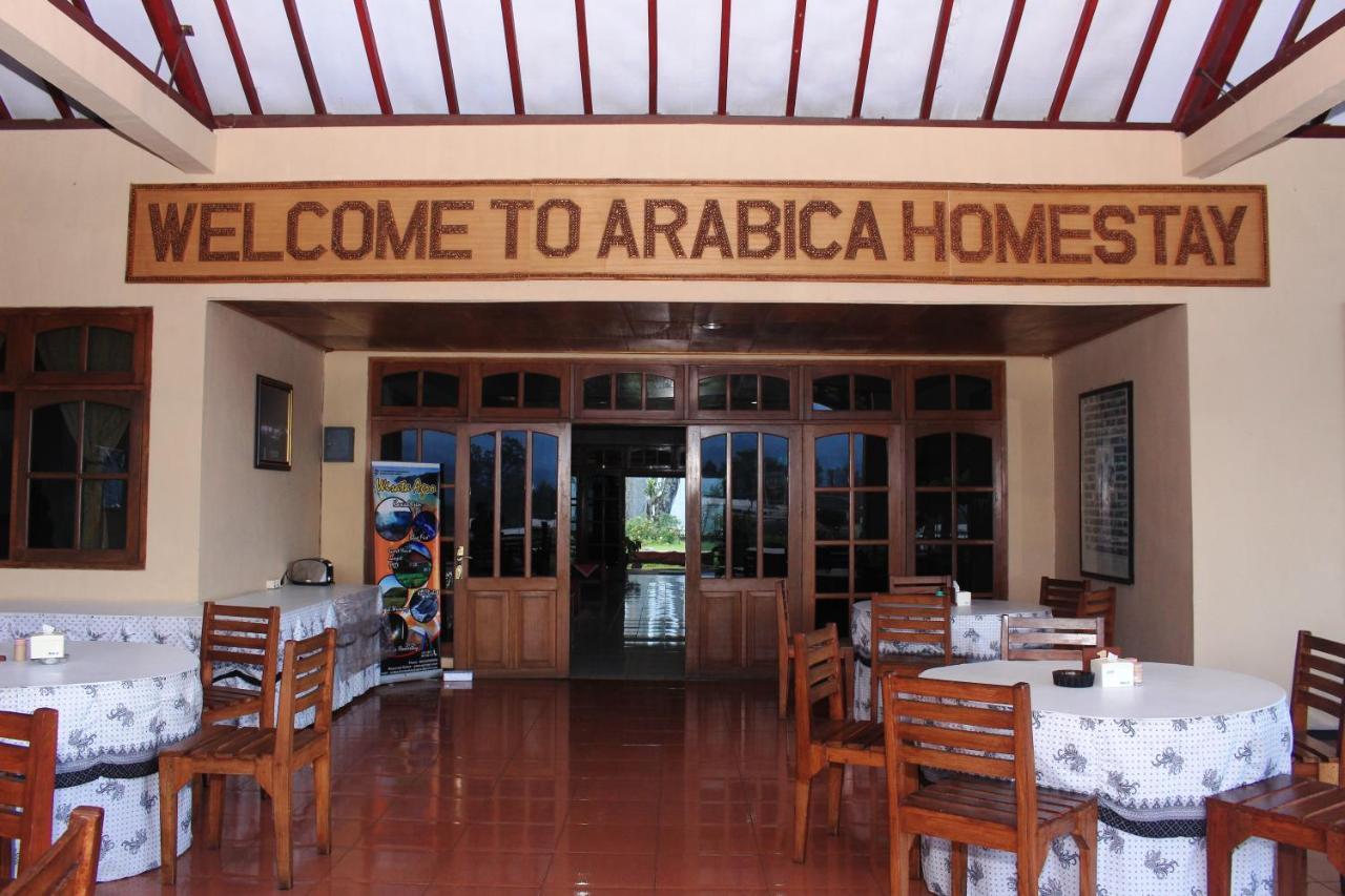 Проживание в семье  Arabica Hotel