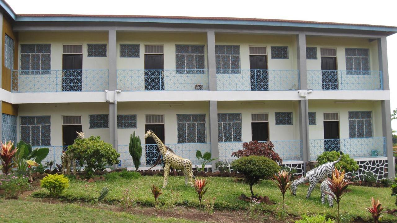 Escort girls in Mbamba Bay