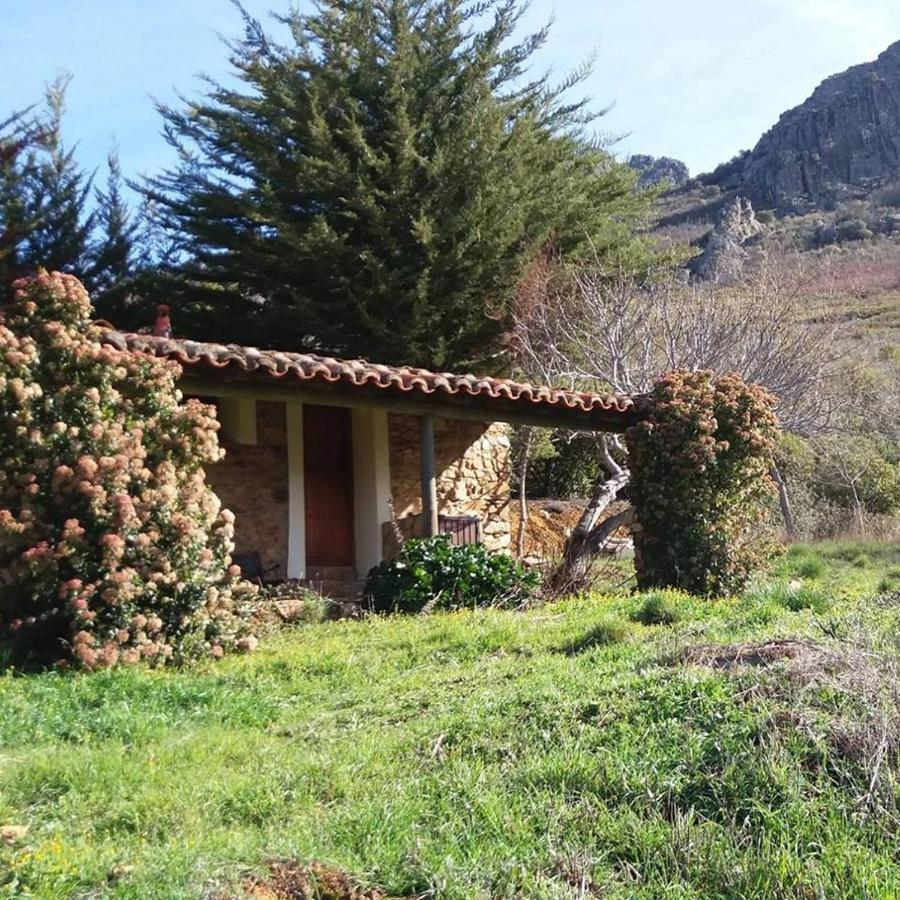Гостевой дом  Finca La Sierra