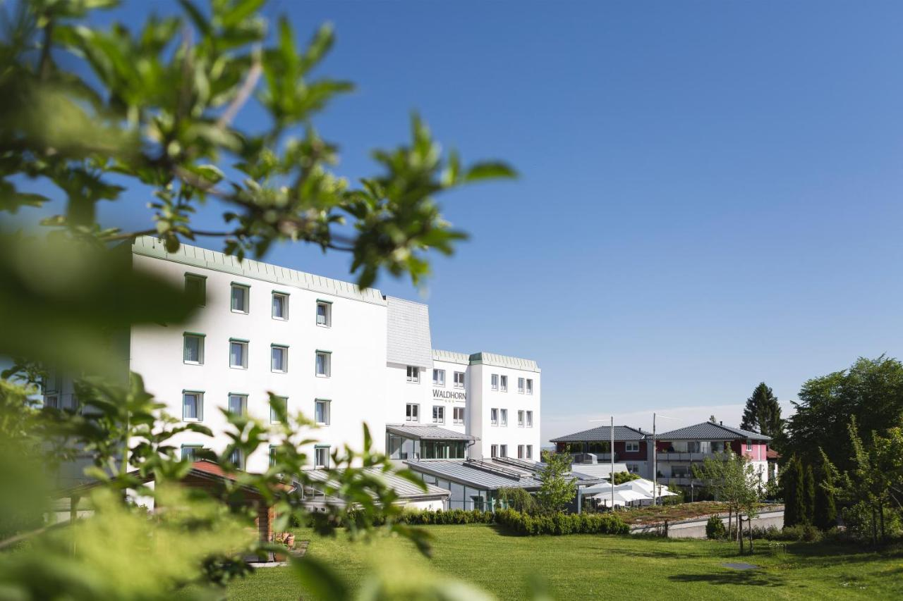 Отель  Hotel Waldhorn