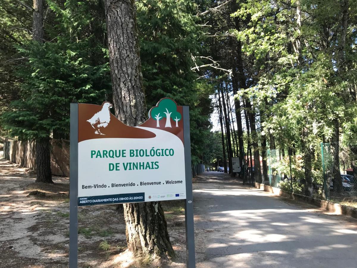 Кемпинг  Parque Biologico De Vinhais