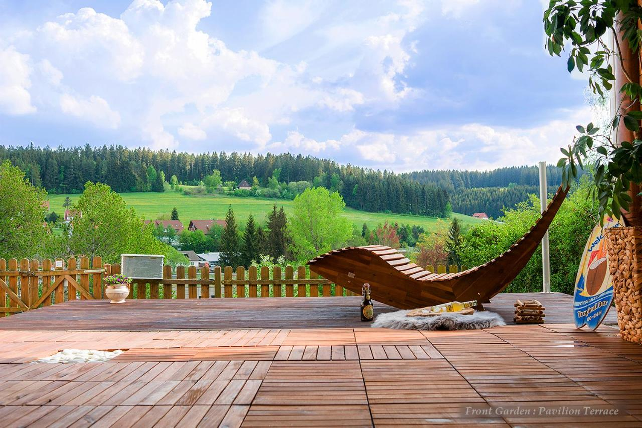 Entire House In Schwarzwald With Mountain View Private Gym Sauna