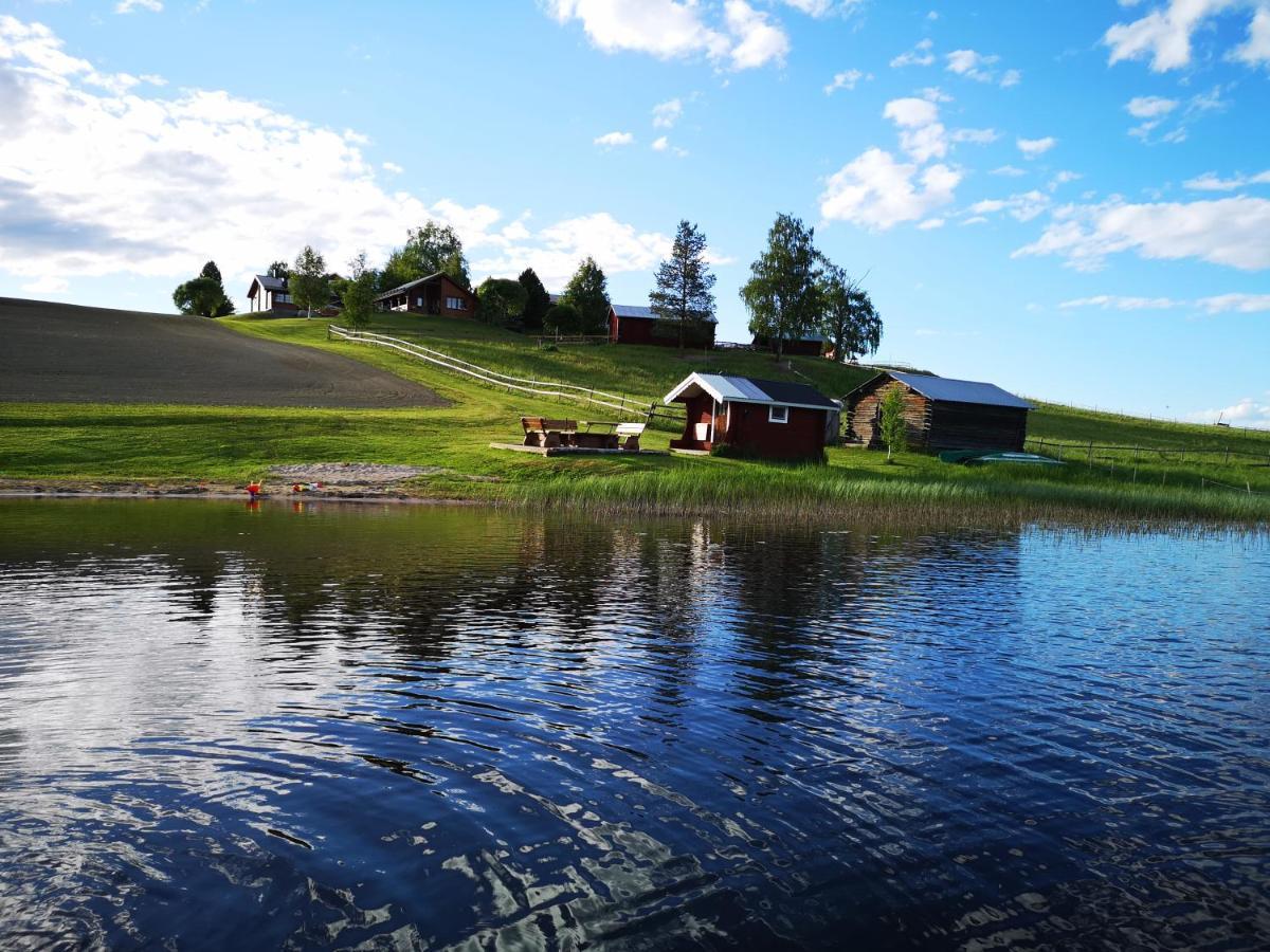Ingalott karlsson, Kvinna, 63 | lvsbyn, Sverige | Badoo