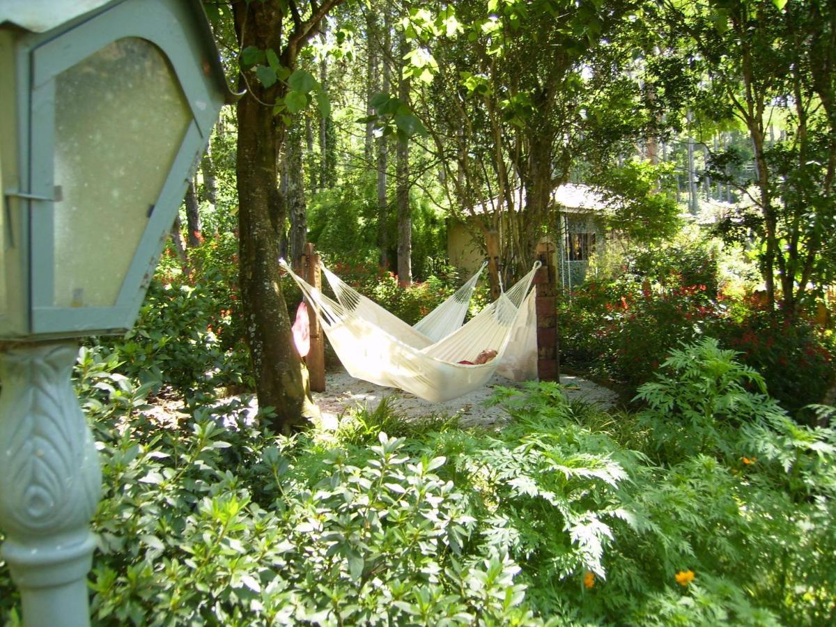 Um jardim no exterior de Hotel Fazenda Santa Marina