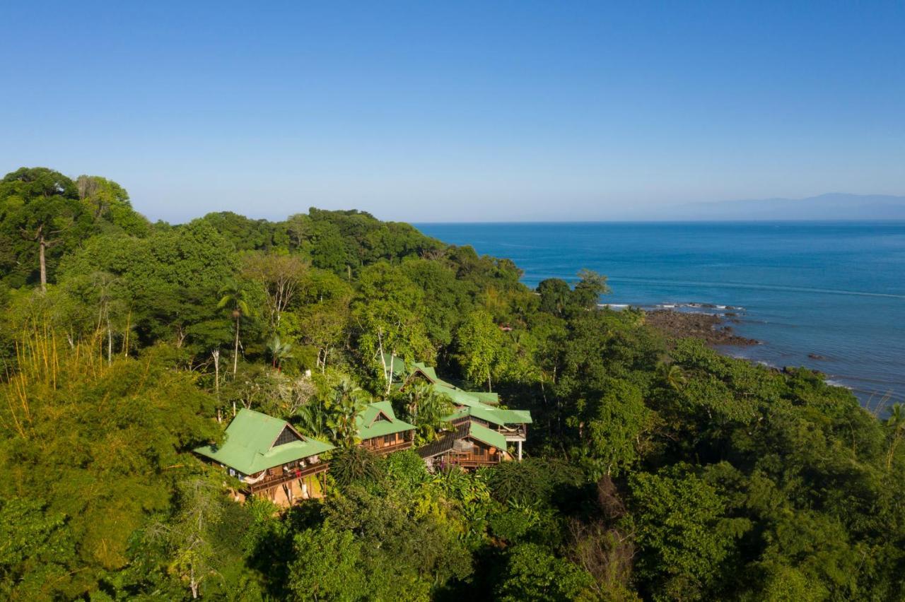 Отель  Aguila De Osa Rainforest Lodge
