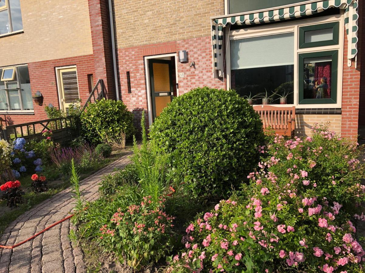 Guest Houses In De Waal Texel
