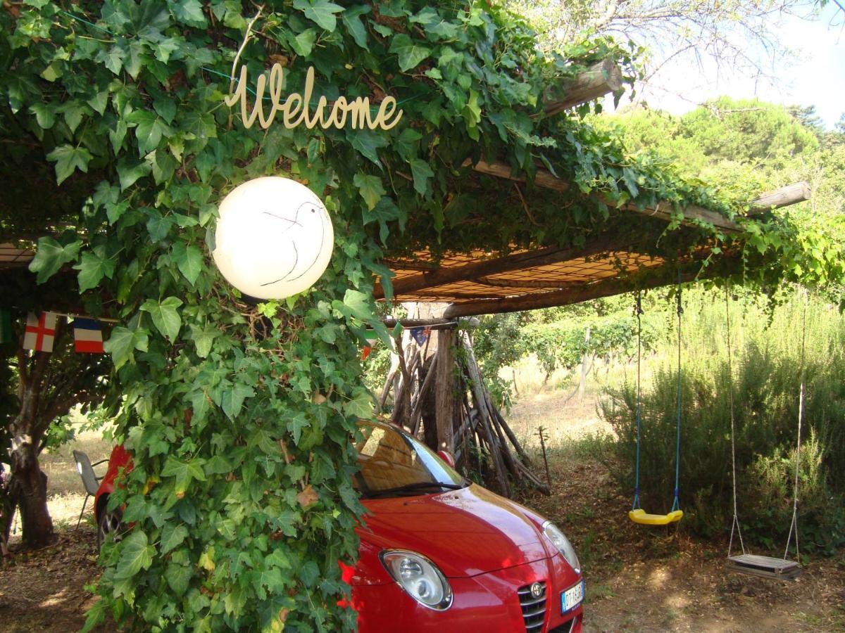 Отель типа «постель и завтрак»  B&B Alla Palombara Di Rossano