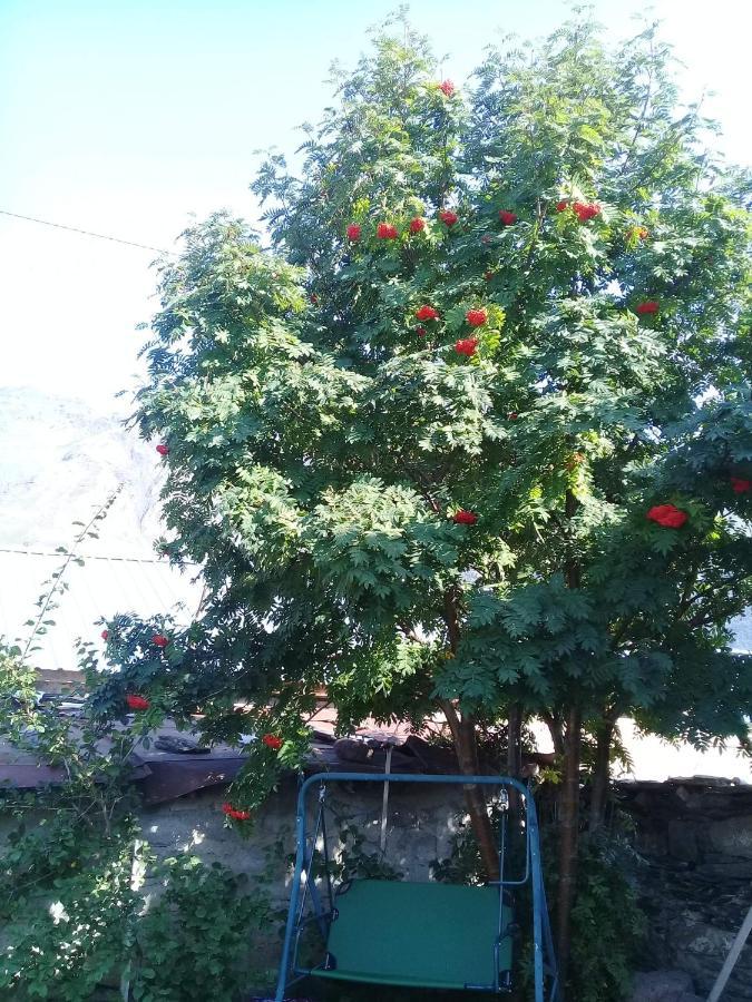 Апартаменты  Spend Your Summer In Gergeti