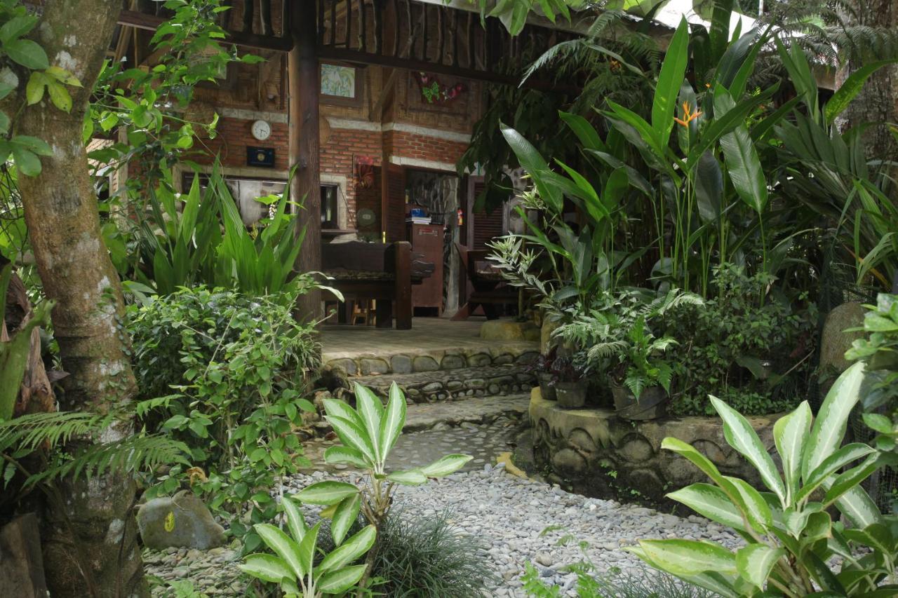 Гостевой дом  Kupu-Kupu Garden Guest House & Cafe