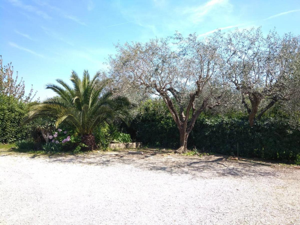 Une Glycine En Pot villa glycine, grasse, france - booking