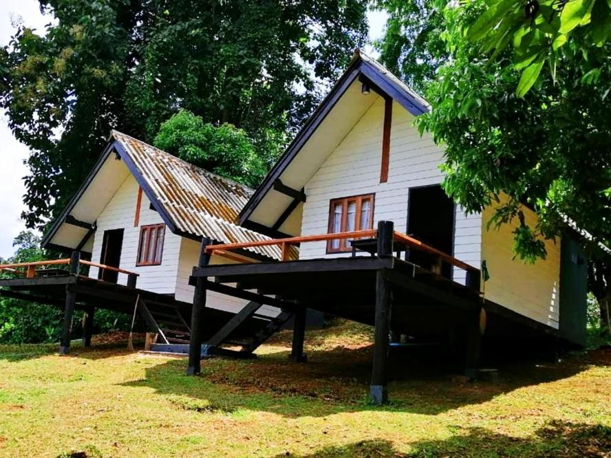 Отель  Jungle Guest House