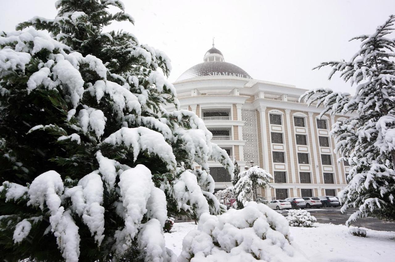 Отель  Shamakhi Palace Sharadil
