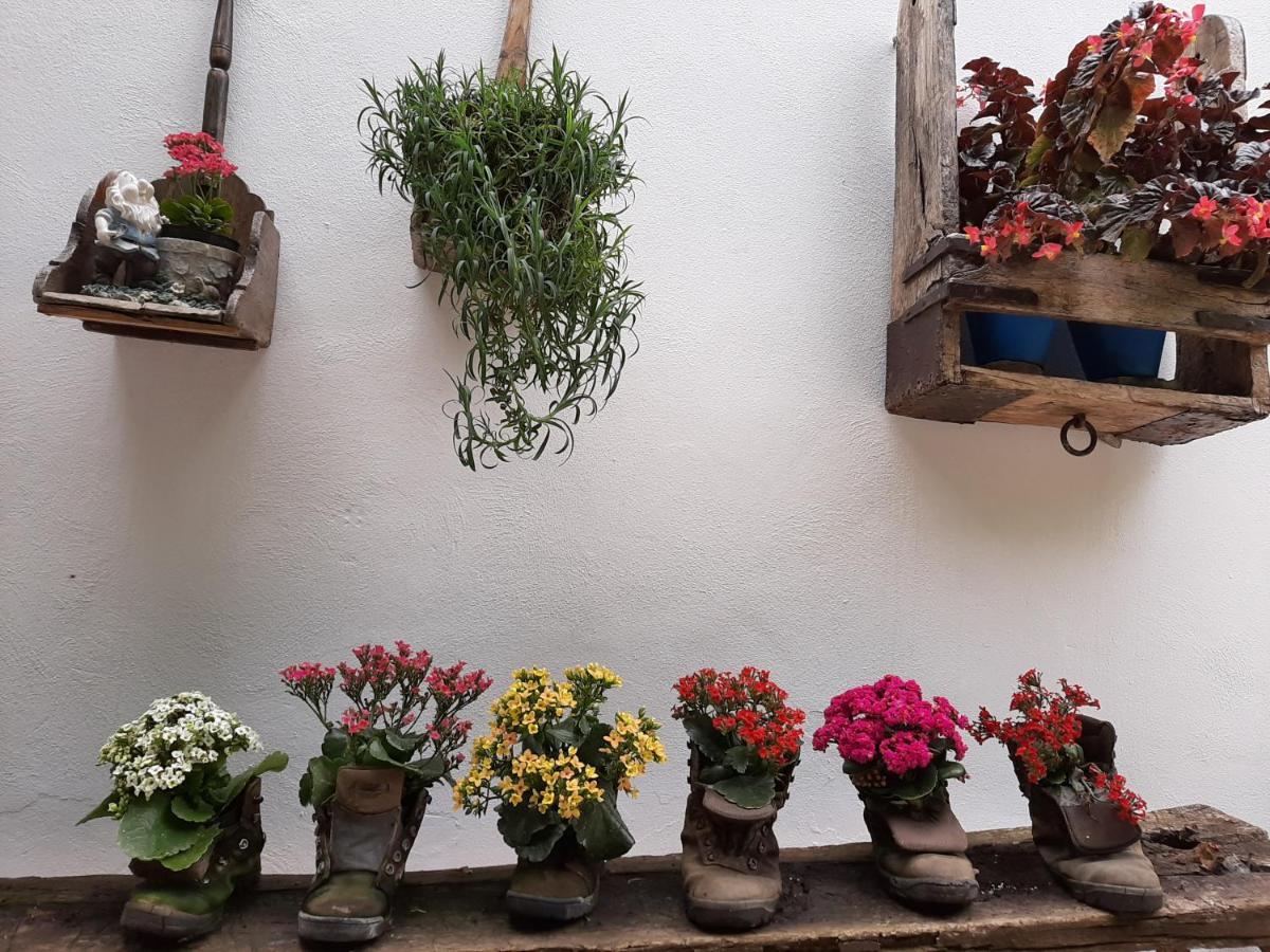 Фото  Загородный дом  El Rincon De Carmen