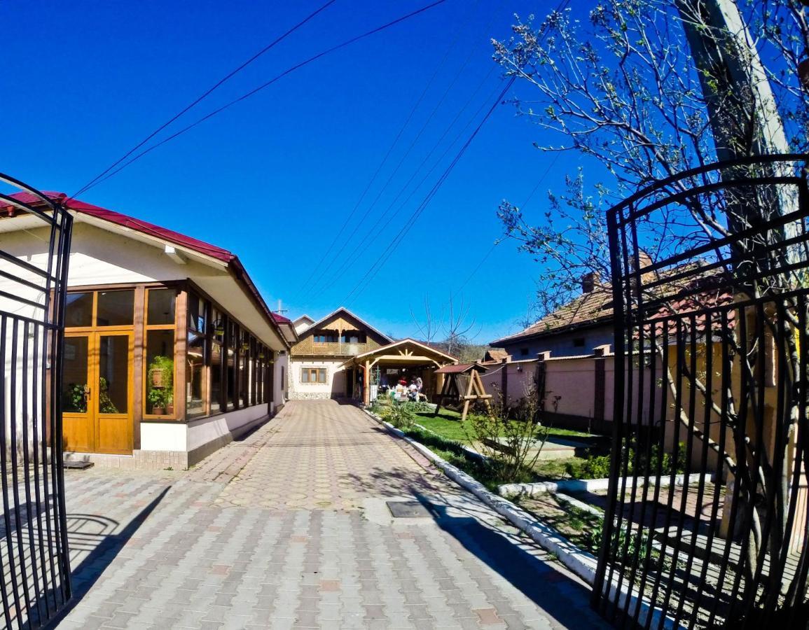 Гостевой дом  Vila Speranta