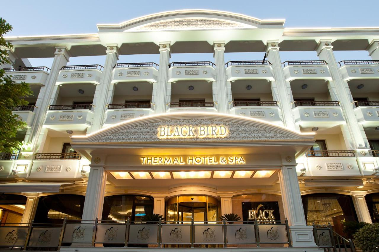 نتيجة بحث الصور عن فندق بلاك بيرد ترمال يلوا تركيا