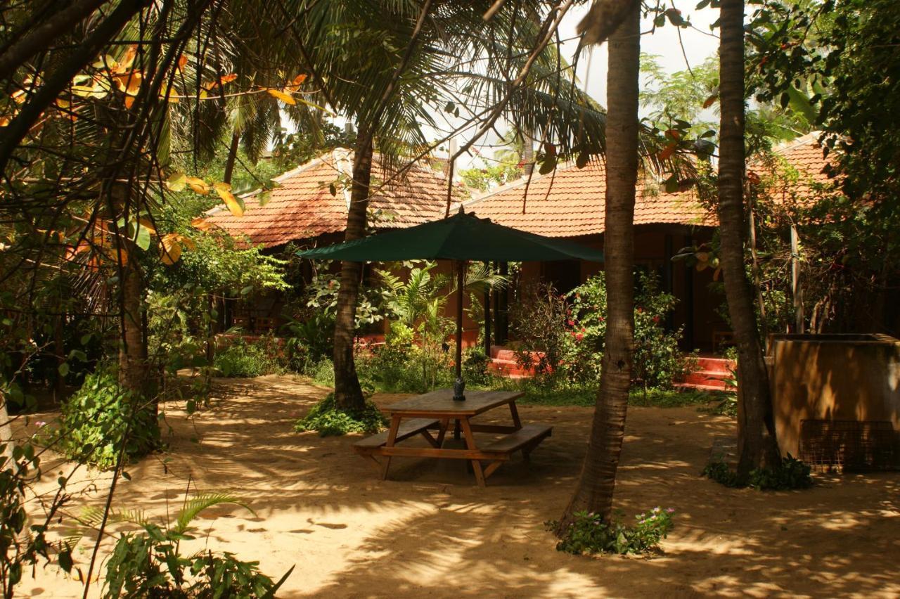 Отель Arugam Bay Ocean Beach Hotel