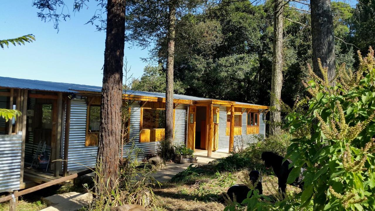 Дом для отпуска  Evergreen Cabin