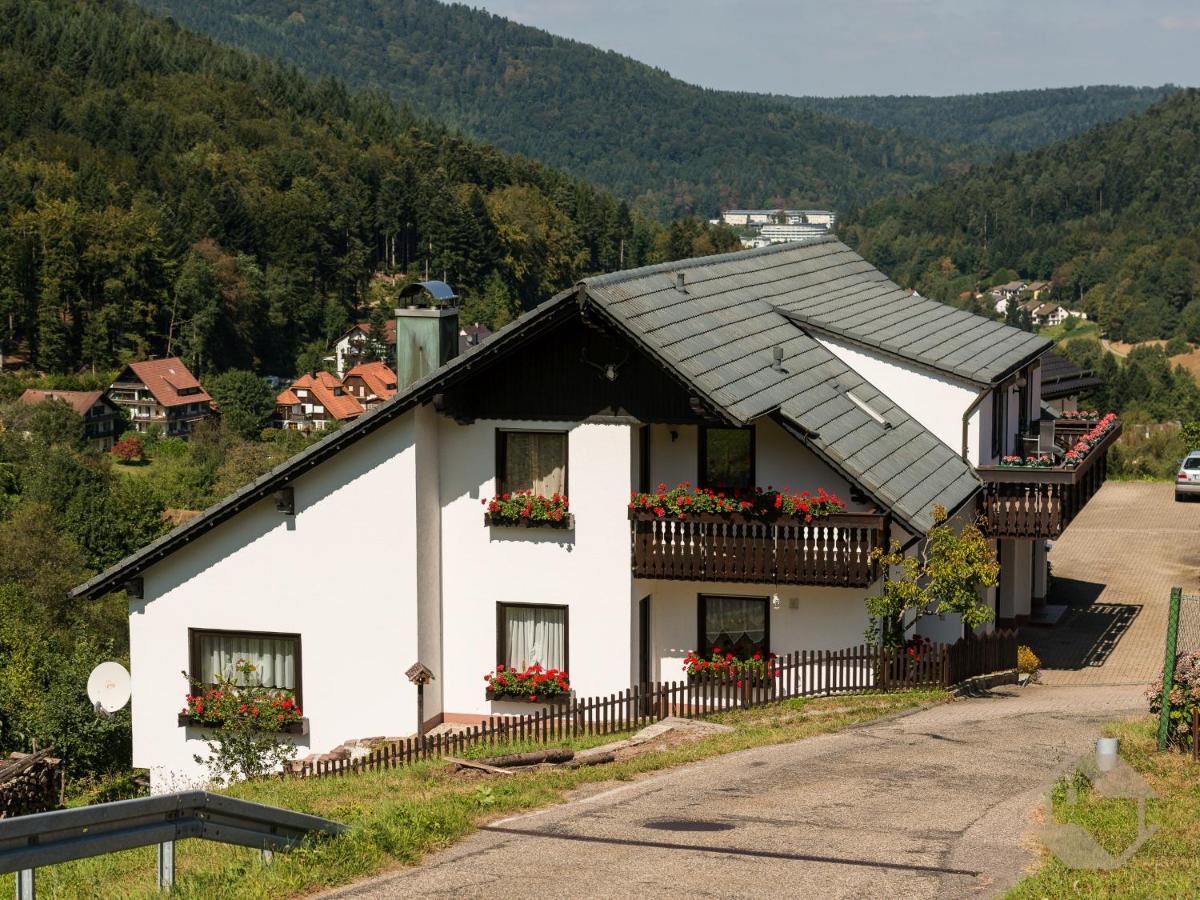 Апартаменты/квартира  Ferienwohnungen Eva-Maria Und Anna