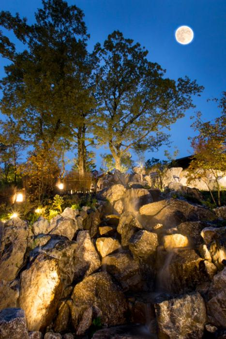 記念日におすすめのレストラン・月洸樹の写真6