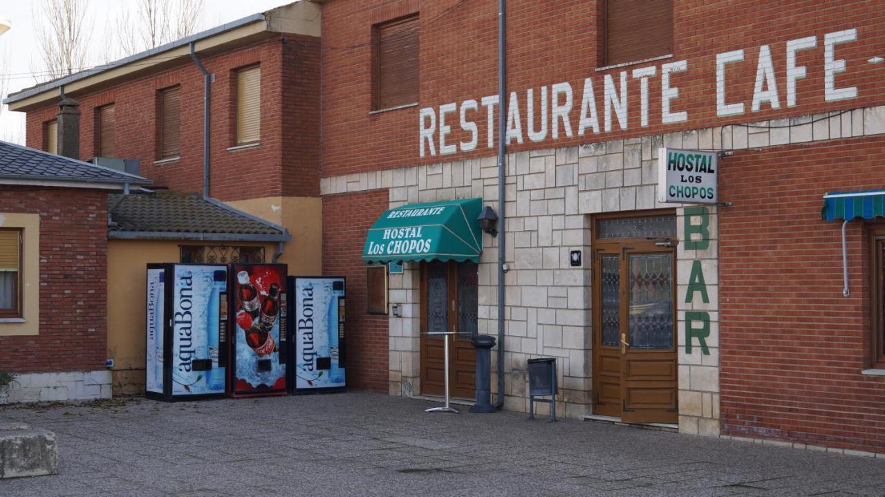 Guesthouse Hostal Los Chopos, Osorno, Spain - Booking.com