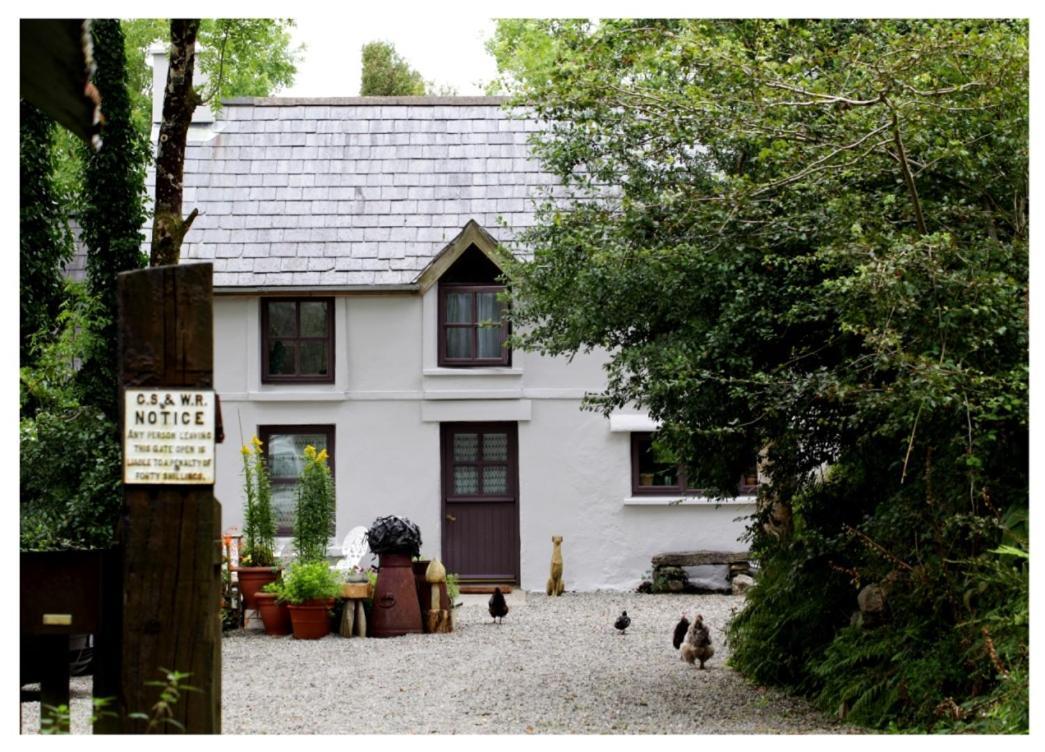 Meet Singles From Dunmanway, Ireland - confx.co.uk