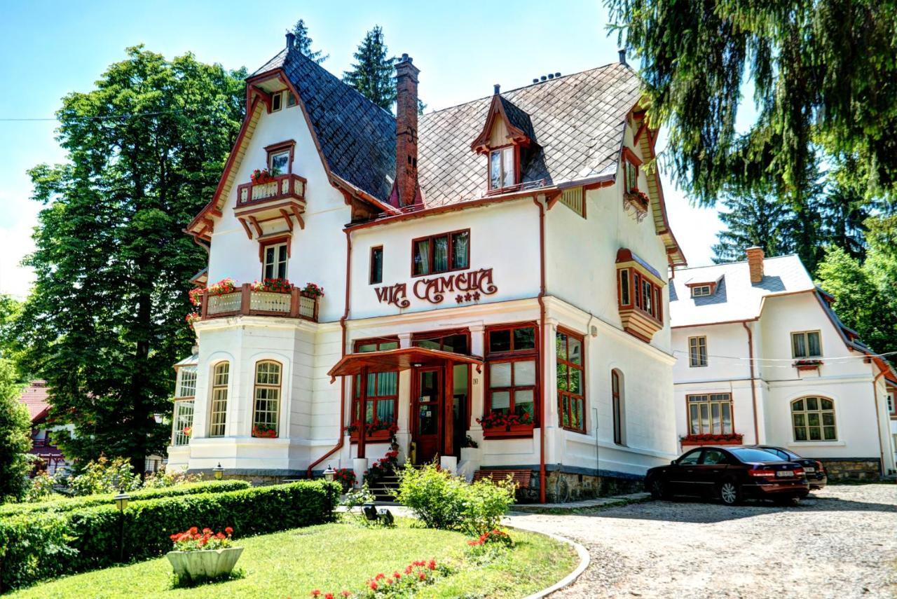 Отель  Vila Camelia