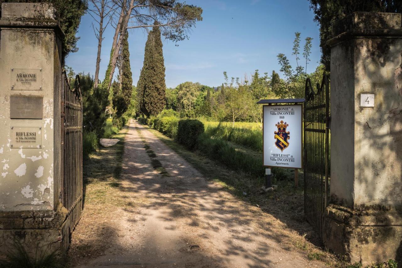 Suggerimenti per addestrare un cucciolo a Santo Stefano di Magra (SP)?