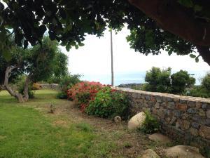 A garden outside Kioni Villas
