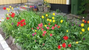 O grădină în afara Lilla Munkhagen